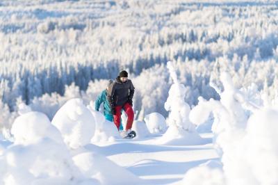Snowshoe trip at Tahko